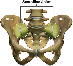 Sacroiliac Joint Anatomy Diagram